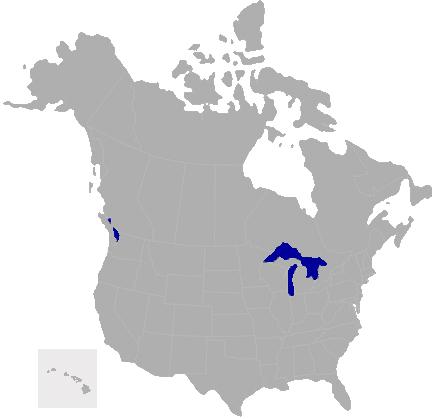 North American Distributor Map