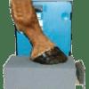 Equine Hoof Positioning Blocks