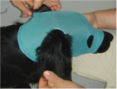 VetMed Care Leg/Head Extremity Protection Set